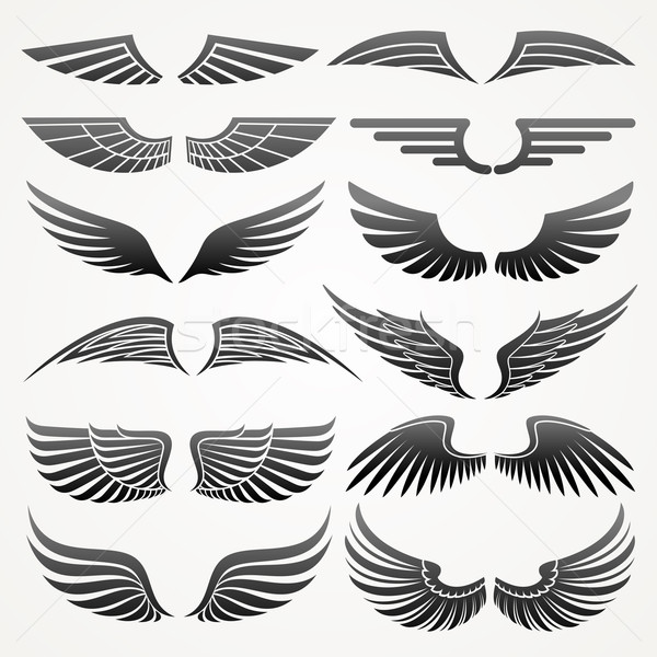 Wings. Vector logo template set. Elements for design. Icon set. Stock photo © ussr