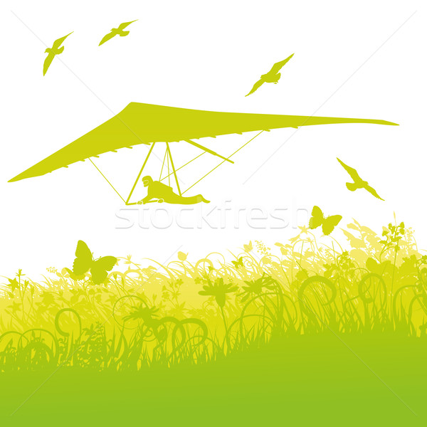 Hang-glider in the nature and air Stock photo © Ustofre9