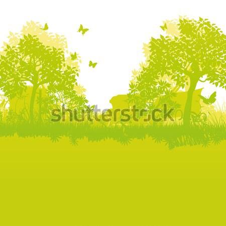 Joshua trees in the desert Stock photo © Ustofre9