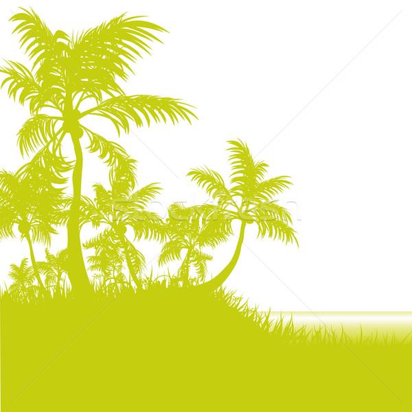 Stockfoto: Palmen · strand · bloemen · water · natuur · zee