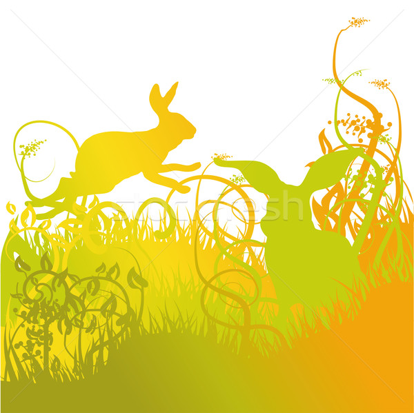 Rabbit hopping on the lawn Stock photo © Ustofre9
