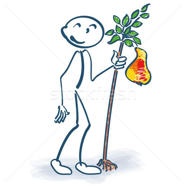 Weinig peer boom vruchten dienst Stockfoto © Ustofre9