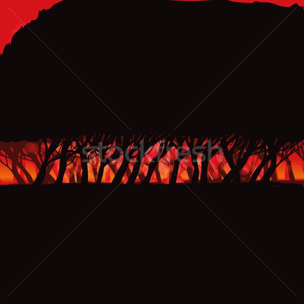Burning forest  Stock photo © Ustofre9