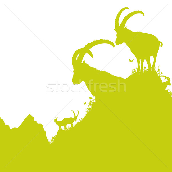 Ibex in the mountains Stock photo © Ustofre9