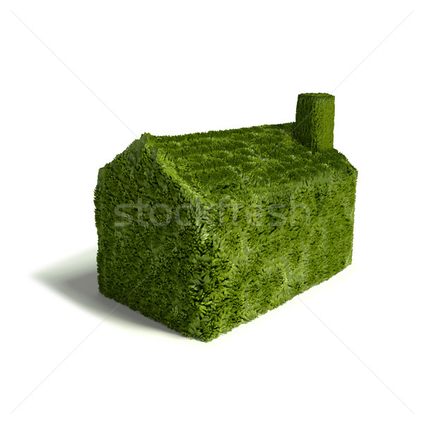 Small green grass house  Stock photo © Ustofre9
