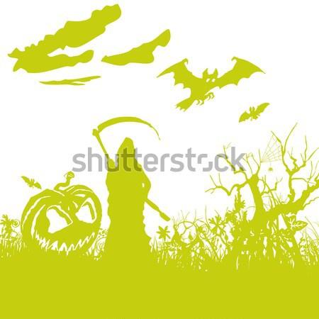 Mókusok tűlevelű erdő étel fű természet Stock fotó © Ustofre9