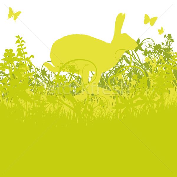 заяц луговой Пасху цветы весны трава Сток-фото © Ustofre9