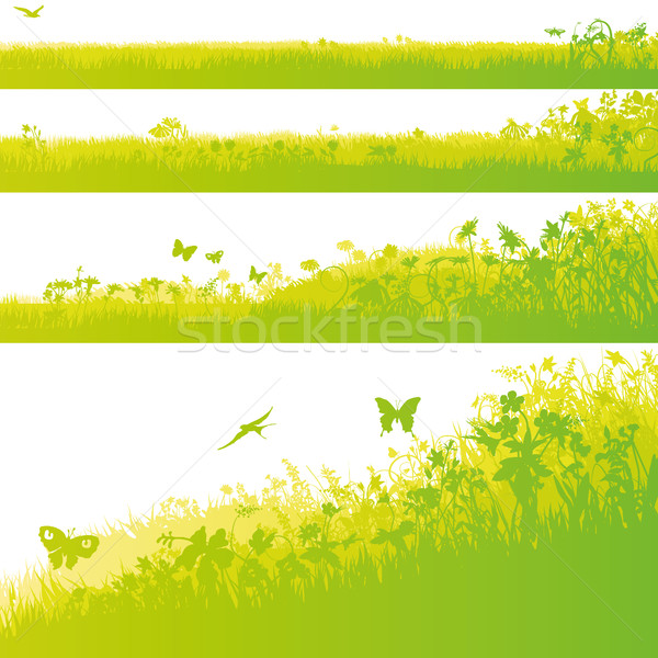Four grass fields in the garden Stock photo © Ustofre9