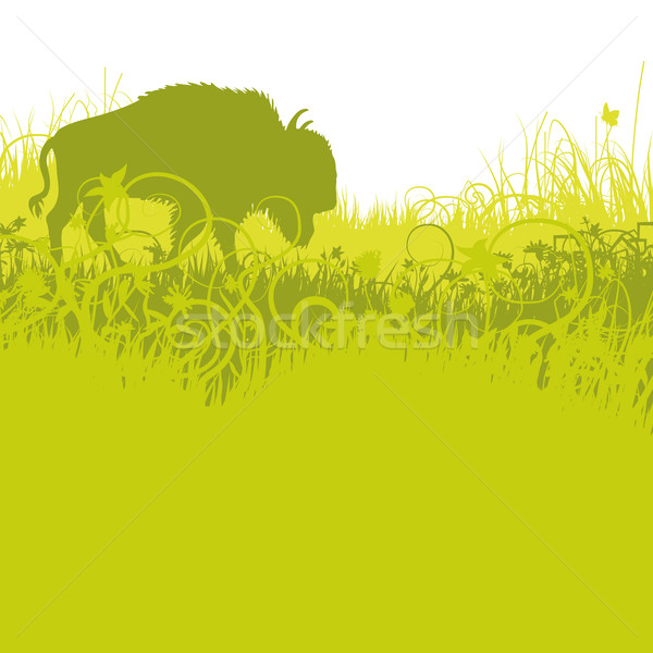 Buffalo in the american plains Stock photo © Ustofre9