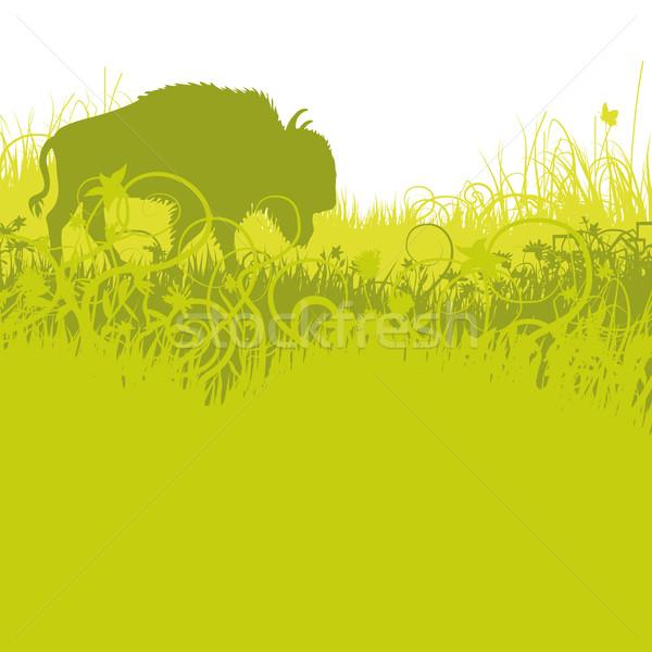 アメリカン 平野 草 地図 自然 風景 ストックフォト © Ustofre9