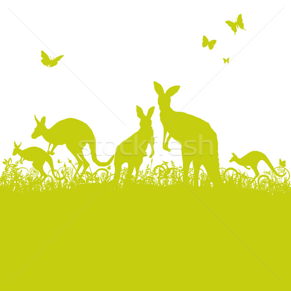 Jumping kangaroos in the grass Stock photo © Ustofre9
