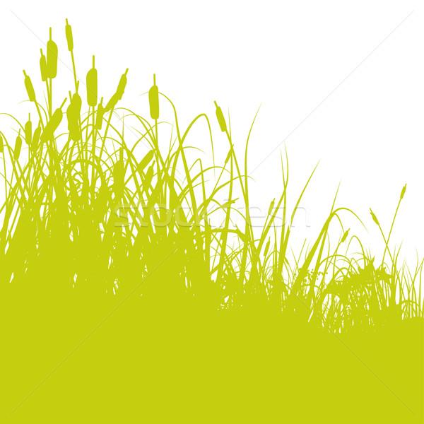 Stockfoto: Rand · vijver · water · voorjaar · kaart · landschap