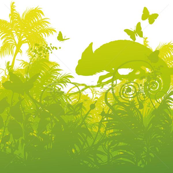 Chameleon dżungli wiosną charakter krajobraz ogród Zdjęcia stock © Ustofre9