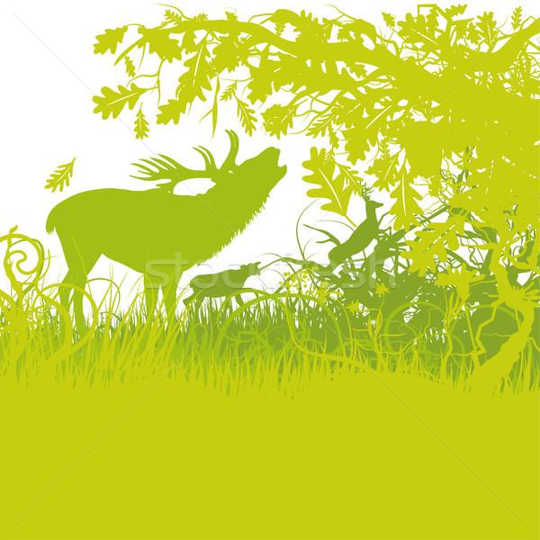 ストックフォト: 鹿 · 草 · 森林 · 地図 · 自然 · 風景