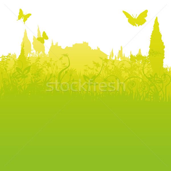 трава туризма цветок природы пейзаж свет Сток-фото © Ustofre9