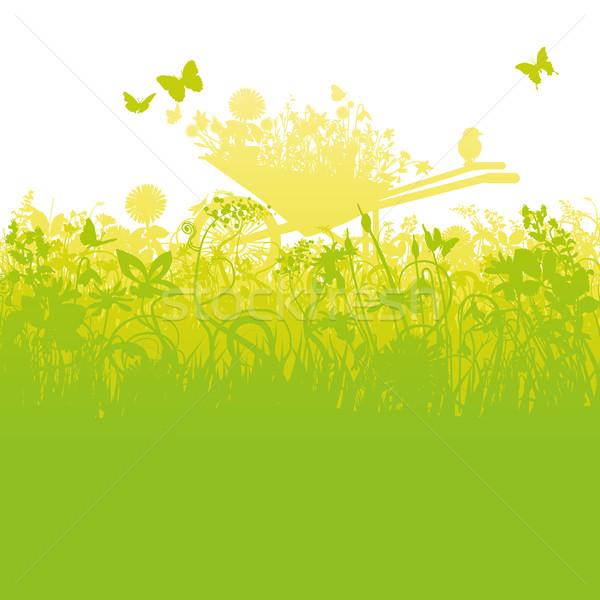 Talicska kert megnőtt fű tájkép háttér Stock fotó © Ustofre9