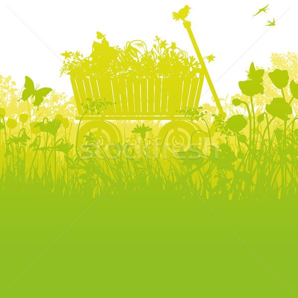 Alto denso grama flores primavera segurança Foto stock © Ustofre9
