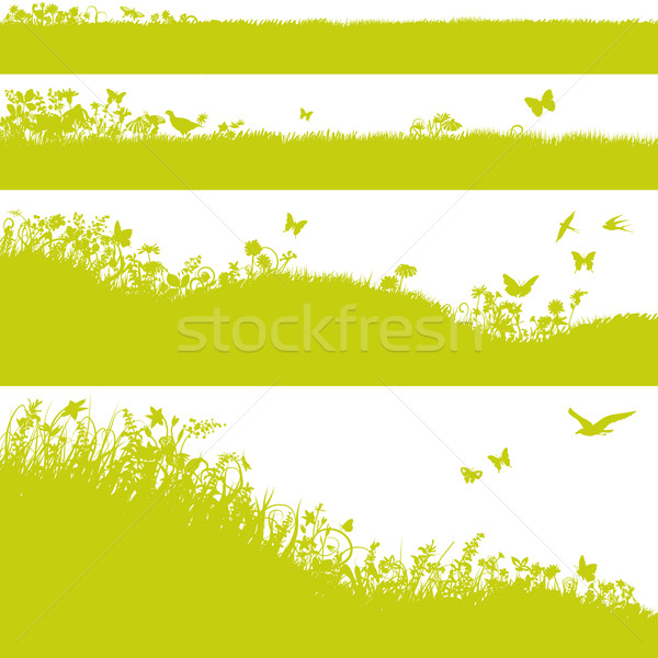 Four meadows, grass and flowers Stock photo © Ustofre9