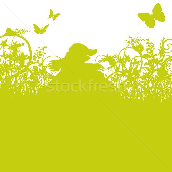 моль холме цветы трава бабочка саду Сток-фото © Ustofre9