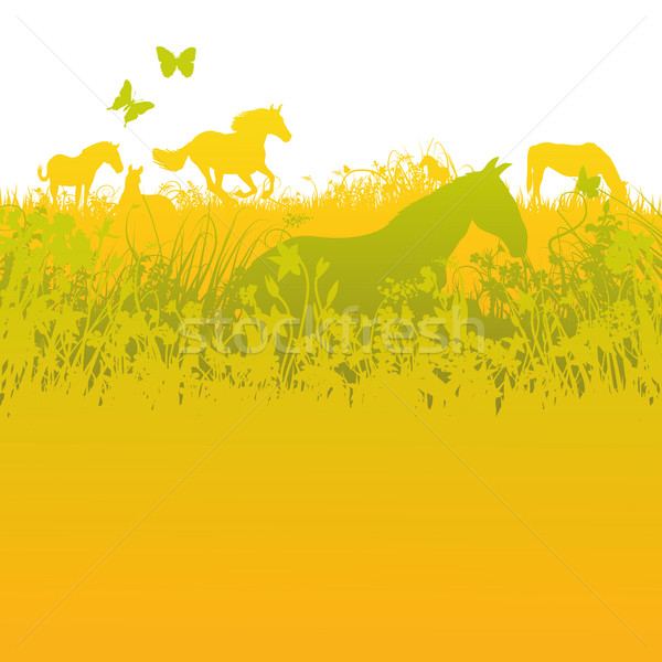 Herd of horses on green pasture  Stock photo © Ustofre9