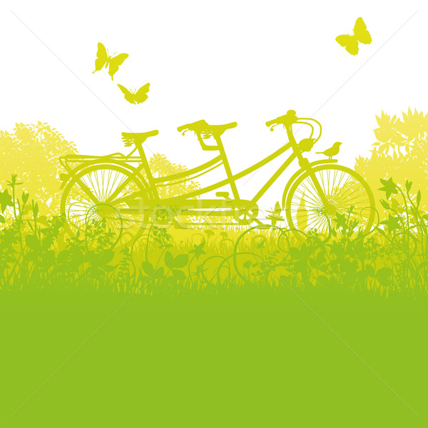 Bicycle and tandem in spring Stock photo © Ustofre9