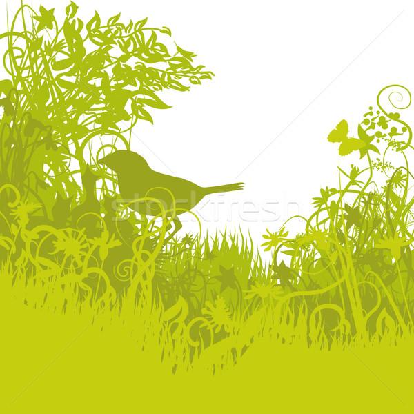 Bird's nest in the green undergrowth Stock photo © Ustofre9