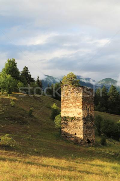Old tower Stock photo © vadimmmus