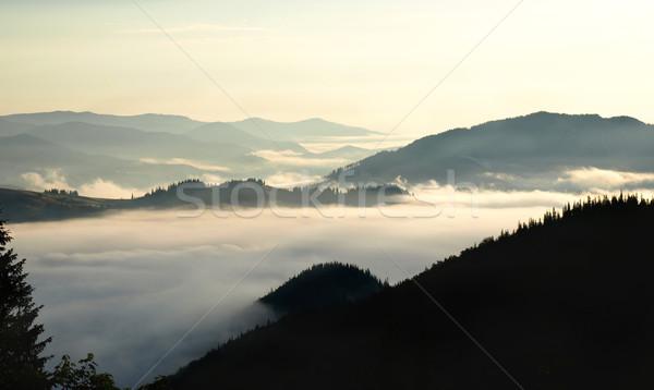 Manhã nebuloso vôlei montanhas céu natureza Foto stock © vadimmmus