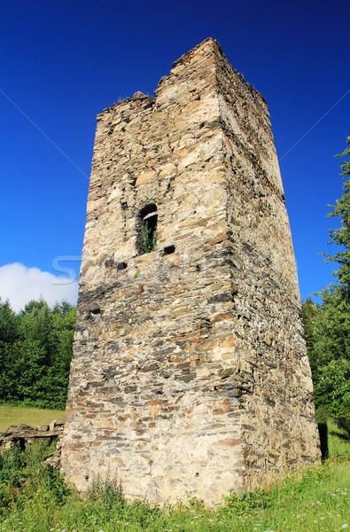 древних башни холмы Blue Sky трава лес Сток-фото © vadimmmus