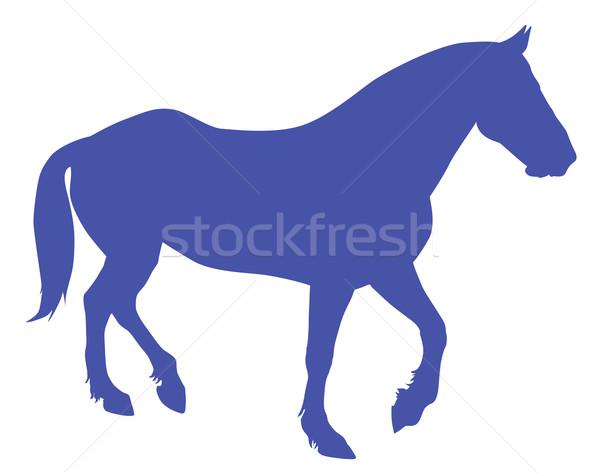Vector horse Stock photo © vadimmmus