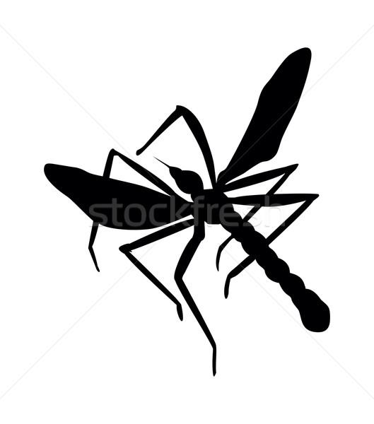 Zanzara silhouette vettore eps natura Foto d'archivio © vadimmmus
