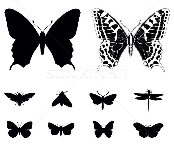 Pillangó sziluettek gyűjtemény kert fekete sziluett Stock fotó © vadimmmus