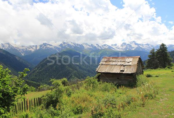 Hegy ház fából készült hegyek kék fa Stock fotó © vadimmmus