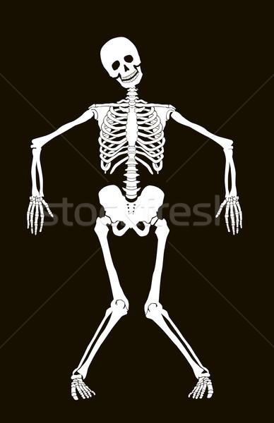 Foto stock: Esqueleto · engraçado · vetor · isolado · preto · halloween