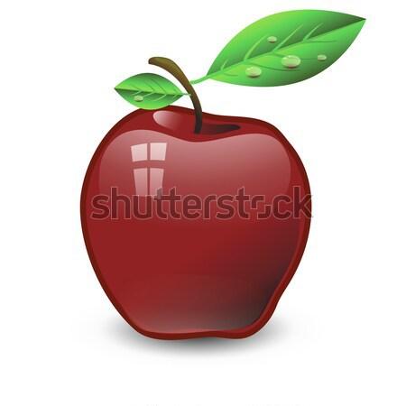 Rode appel kleurrijk illustratie voedsel wereldbol ontwerp Stockfoto © Valeo5