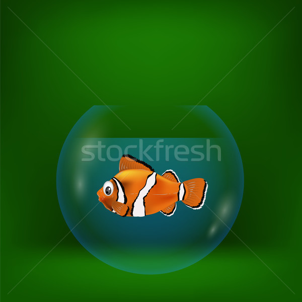 colorful illustration with sea clown fish Stock photo © Valeo5