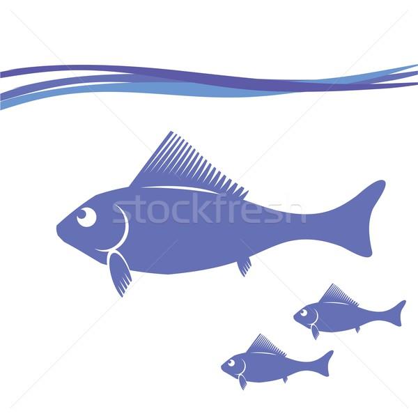 рыбы красочный иллюстрация природы свет Сток-фото © Valeo5