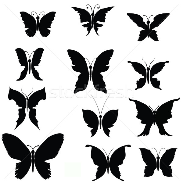 Vlinders zwarte silhouetten schilderij silhouet achtergronden Stockfoto © Valeo5