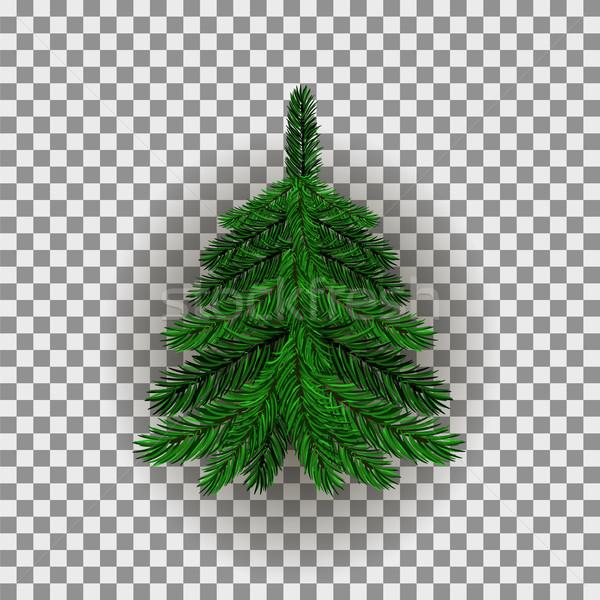 зеленый рождественская елка Рождества ель ель дерево Сток-фото © Valeo5