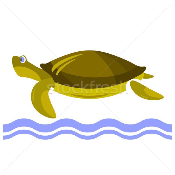 Cartoon черепахи икона изолированный белый воды Сток-фото © Valeo5