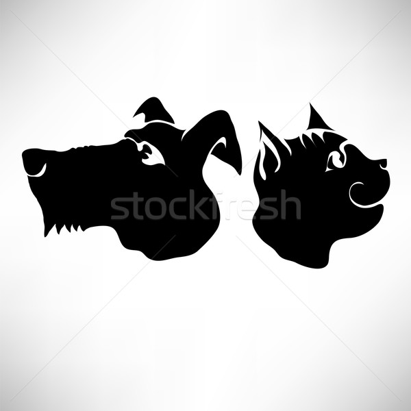 Cat and Dogs Heads Stock photo © Valeo5