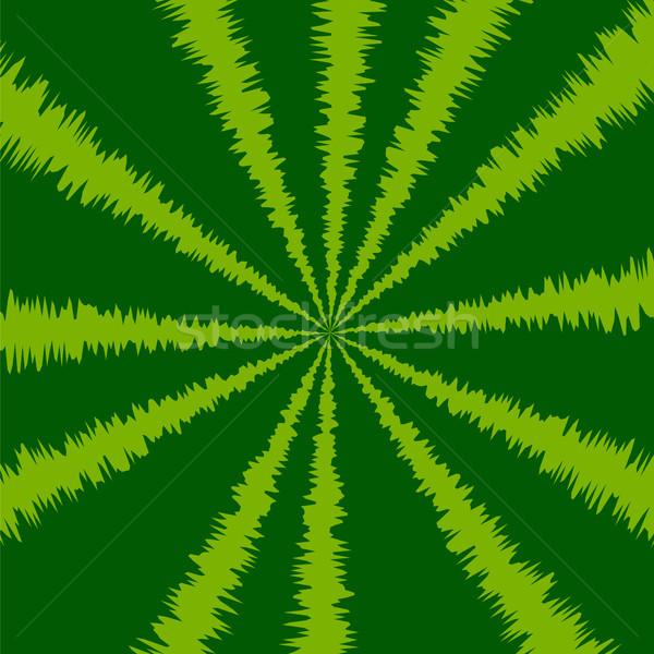 çizgili yeşil karpuz doğal meyve model Stok fotoğraf © Valeo5