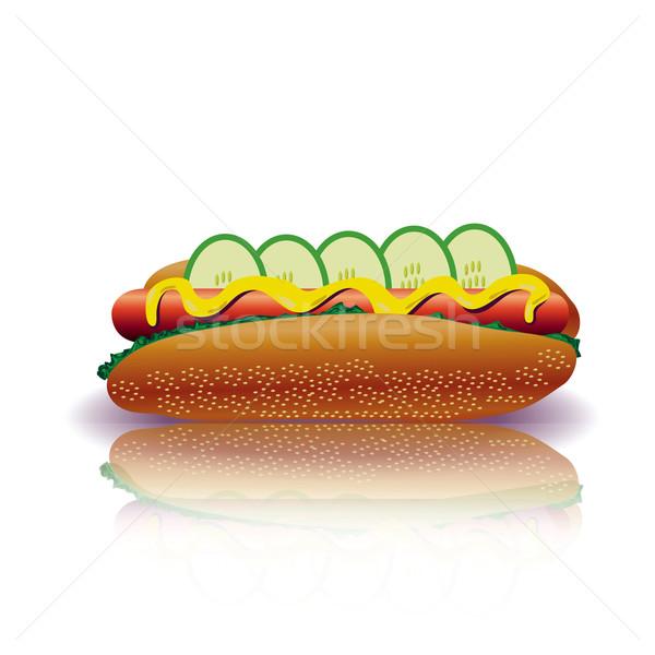 Hot Dog красочный иллюстрация продовольствие обеда еды Сток-фото © Valeo5