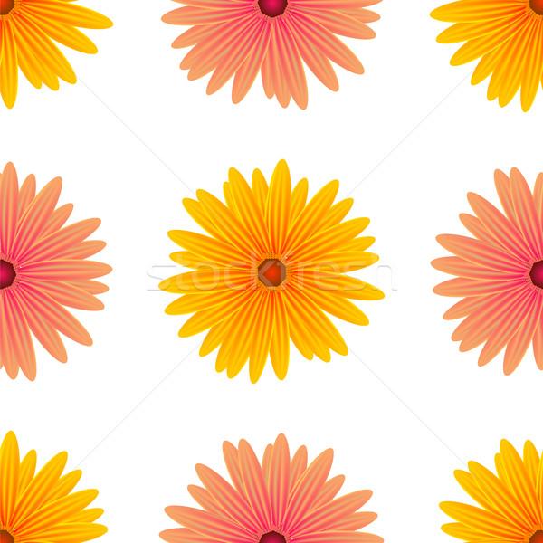 Wiosną różowy żółte kwiaty odizolowany biały bezszwowy Zdjęcia stock © Valeo5