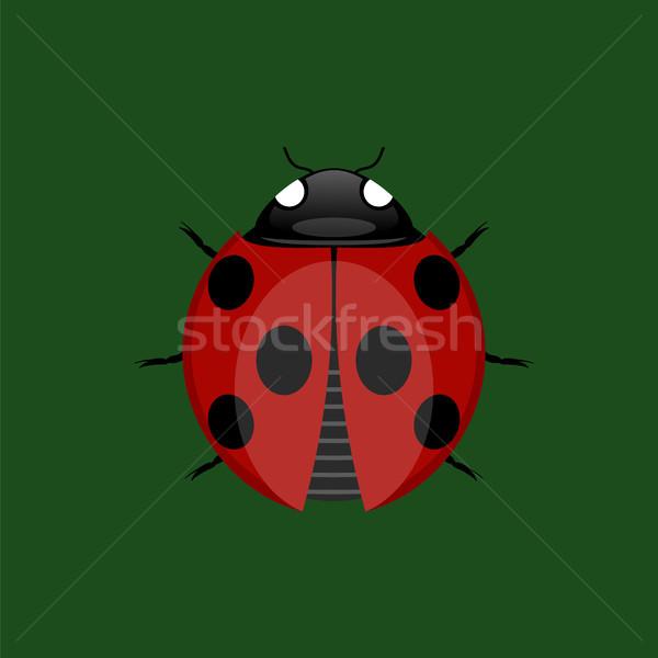 Yaz uğur böceği ikon yalıtılmış yeşil güzellik Stok fotoğraf © Valeo5