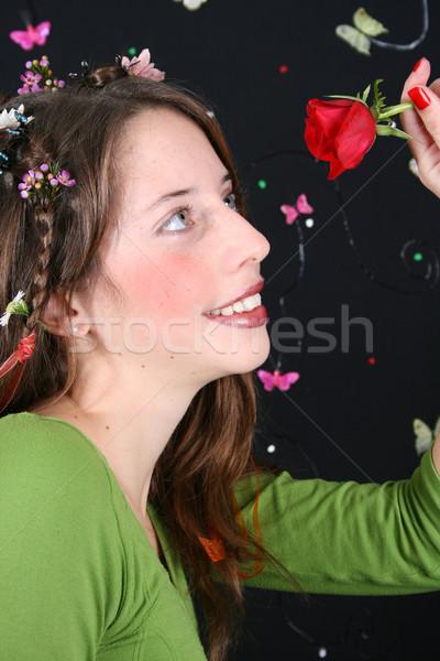 Red Rose Stock photo © vanessavr
