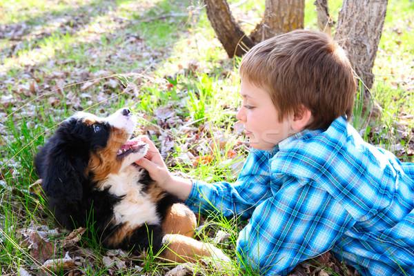 少年 子犬 春 犬 ストックフォト © vanessavr