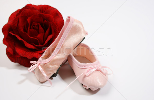 Ballet Shoes and Rose Stock photo © vanessavr