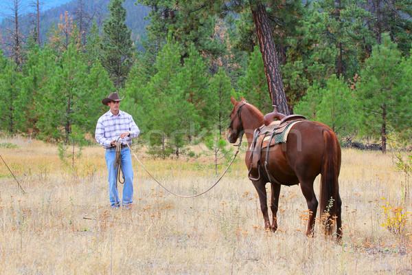 Cowboy рабочих лошади области человека джинсов Сток-фото © vanessavr