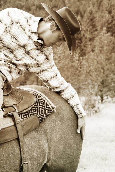 Cowboy appassionato giovani tempo cavallo bellezza Foto d'archivio © vanessavr